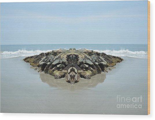 Beach Barrier Wood Print
