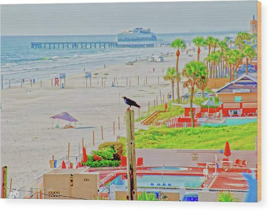 Beach Bird On A Pole Wood Print