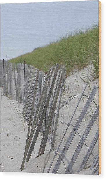 Beach Border Wood Print by Patricia M Shanahan