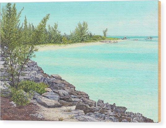 Beach Cove Wood Print
