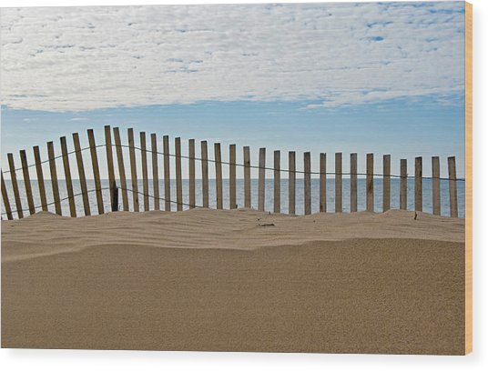 Beach Fence Wood Print by Maria Dryfhout