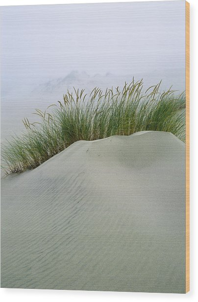 Beach Grass And Dunes Wood Print