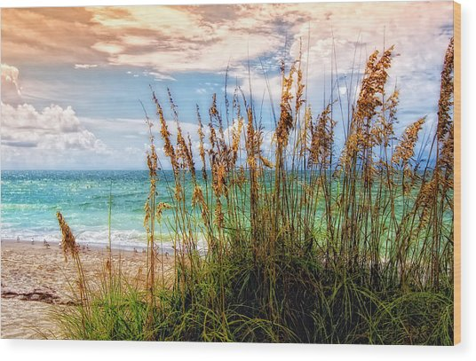Beach Grass II Wood Print