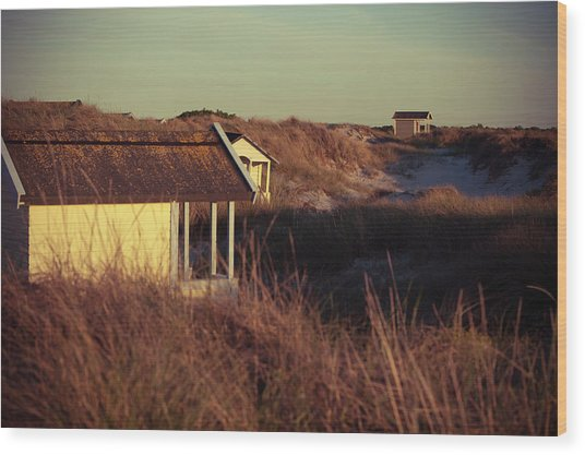 Beach Houses And Dunes Wood Print