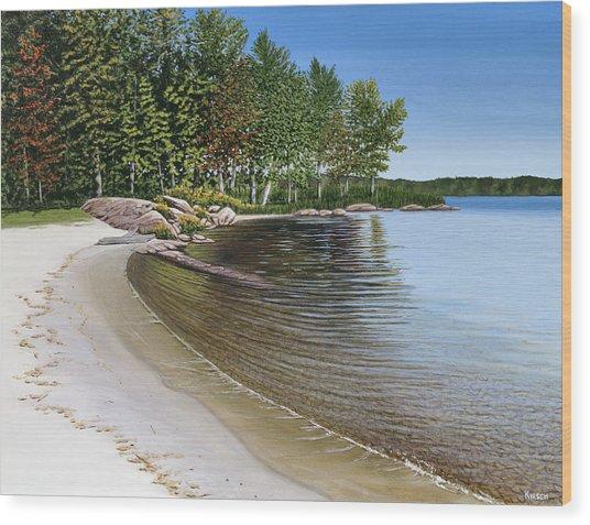 Beach In Muskoka Wood Print