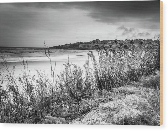 Beach In Ogunquit Wood Print