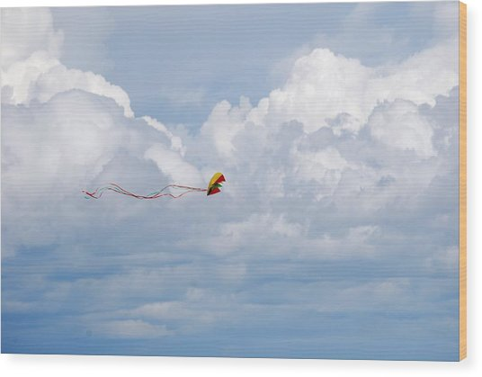 Beach Kite Wood Print by Peter  McIntosh
