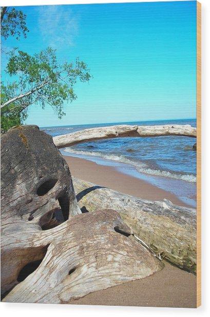 Beach Lodging Wood Print by Peter Mowry