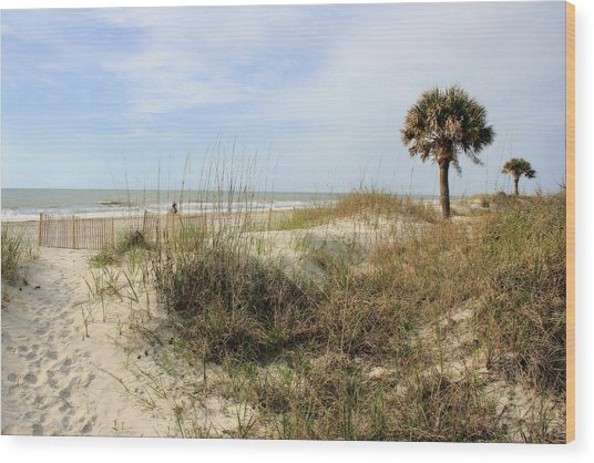 Beach Path Wood Print
