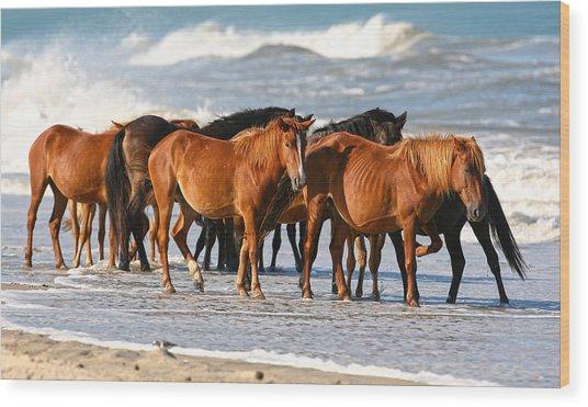 Beach Ponies Wood Print