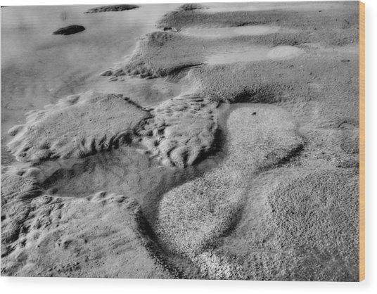 Beach Sand Tide Graffiti  Wood Print by Randy Steele