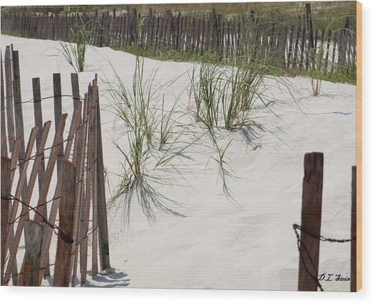 Beach Scene Wood Print by Dennis Stein