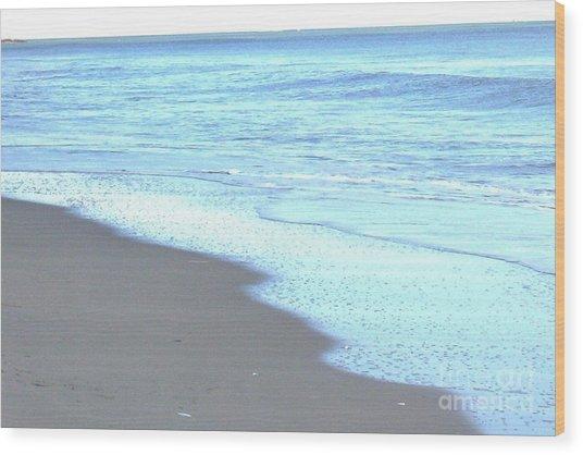 Beach Shore 1 Wood Print by Brian Booth