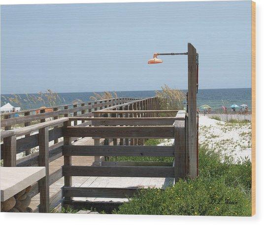 Beach Shower Wood Print by Dennis Stein