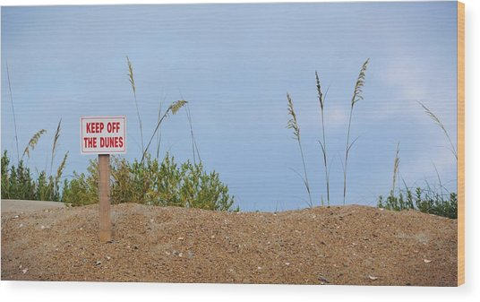 Beach Signs Wood Print by JAMART Photography