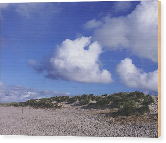 Beach With Clouds Wood Print by Sascha Meyer