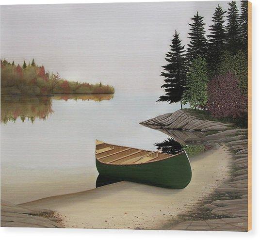 Beached Canoe In Muskoka Wood Print