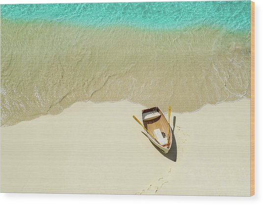 Beached Wood Print