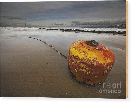 Beached Mooring Buoy Wood Print
