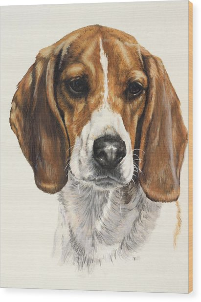 Wood Print featuring the painting Beagle In Watercolor by Barbara Keith