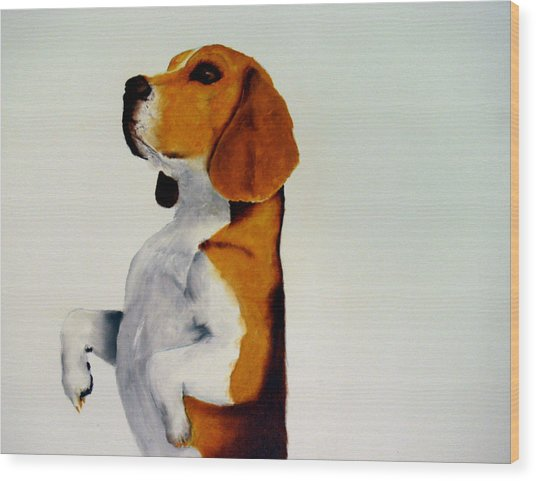 Beagle Wood Print by Dick Larsen