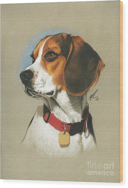 Beagle Wood Print by Marshall Robinson