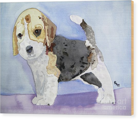 Beagle Pup Wood Print