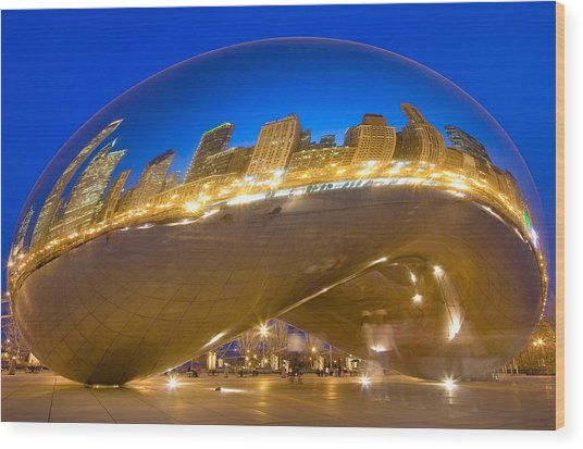 Bean Reflections Wood Print by Donald Schwartz
