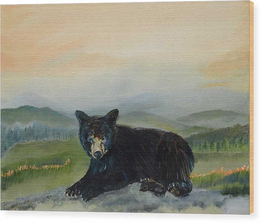 Bear Alone On Blue Ridge Mountain Wood Print