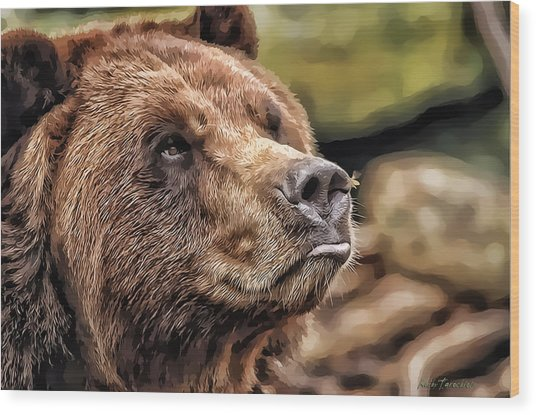 Bear Kiss Wood Print