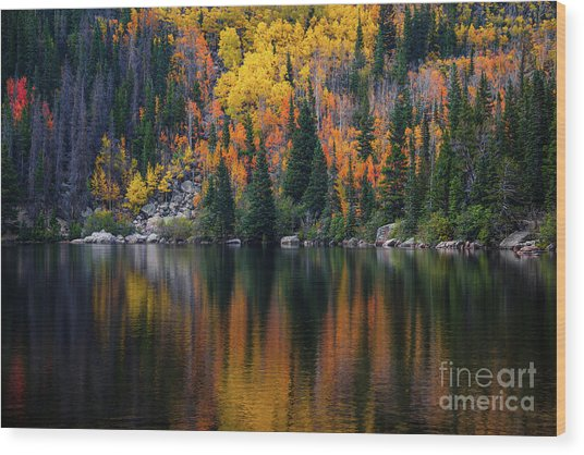 Bear Lake Autumn Reflections Wood Print
