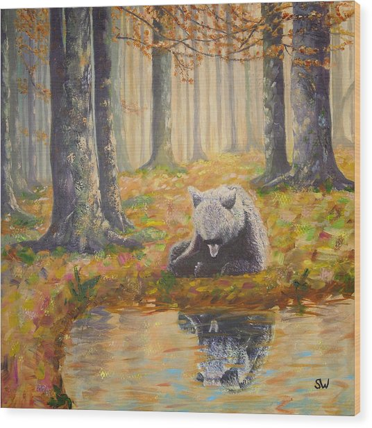 Bear Reflecting Wood Print
