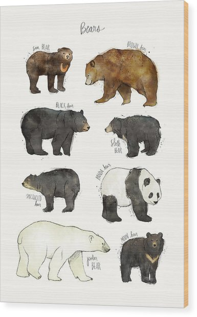 Bears Wood Print