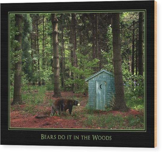 Bears Do It Wood Print