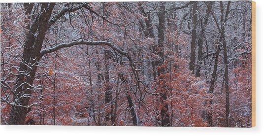 Beautful Change Wood Print