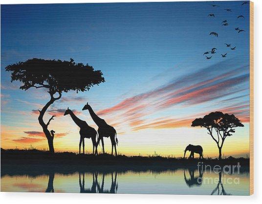 Beautiful  Animals In Safari Wood Print