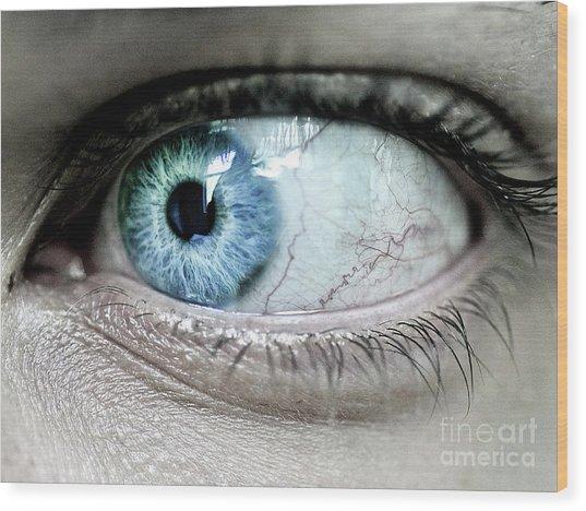 Beautiful Blue Eye Wood Print