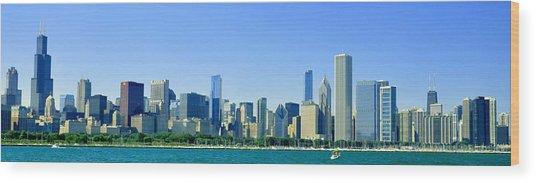 Beautiful Chicago Wood Print