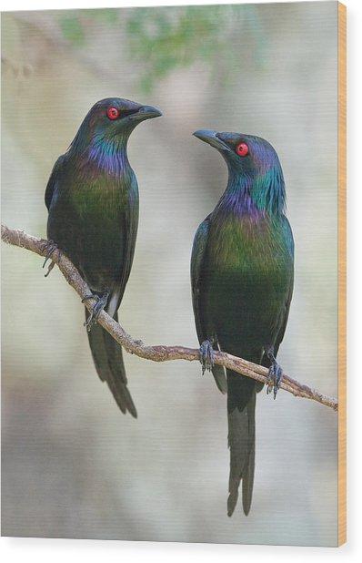 Beautiful Couple Wood Print