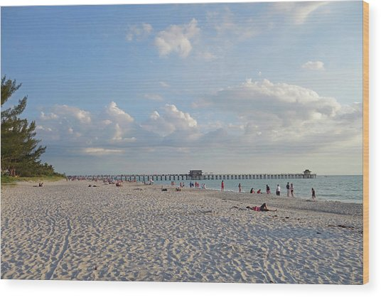 Beautiful Day On Naples Beach Naples Florida Wood Print