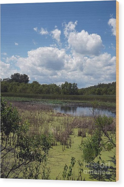 Beautiful Marsh View Wood Print