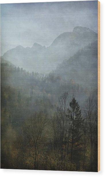 Beautiful Mist Wood Print