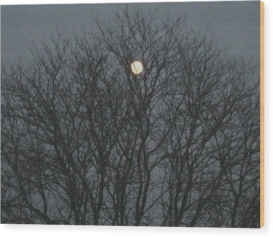Beautiful Moon Wood Print