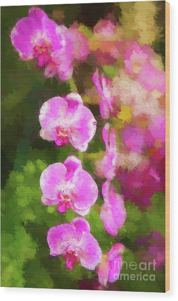 Beautiful Orchids Wood Print