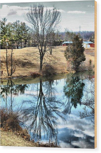 Beautiful Reflection 2 Wood Print by Kathy Jennings