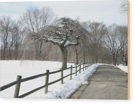 Beautiful Snow Setting Wood Print by Dennis Curry