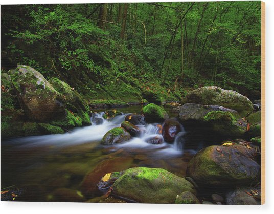 Beautiful Stream In Tremont Smoky Mountains Tennessee Wood Print