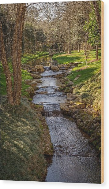 Beautiful Stream Wood Print