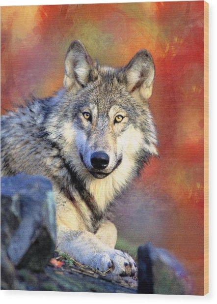 Beautiful Wolf Art Wood Print