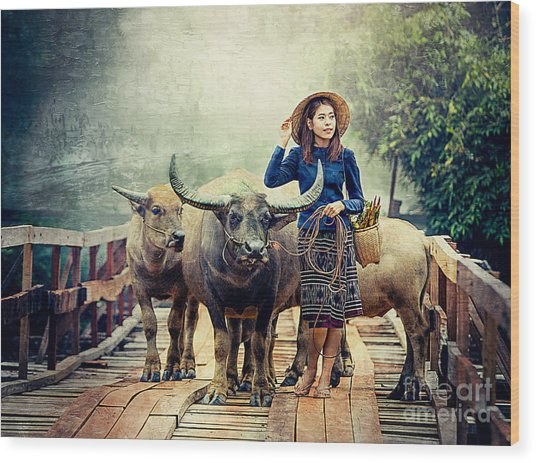 Beauty And The Water Buffalo Wood Print
